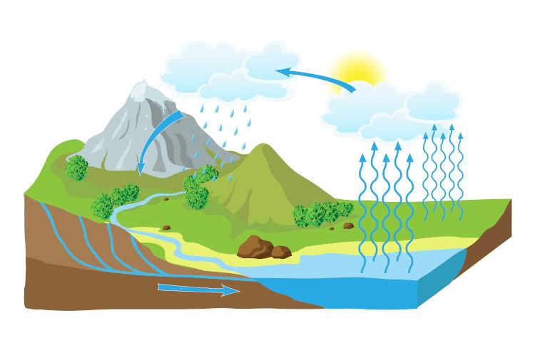 O ciclo da água é responsável pela manutenção do volume de água na Terra.