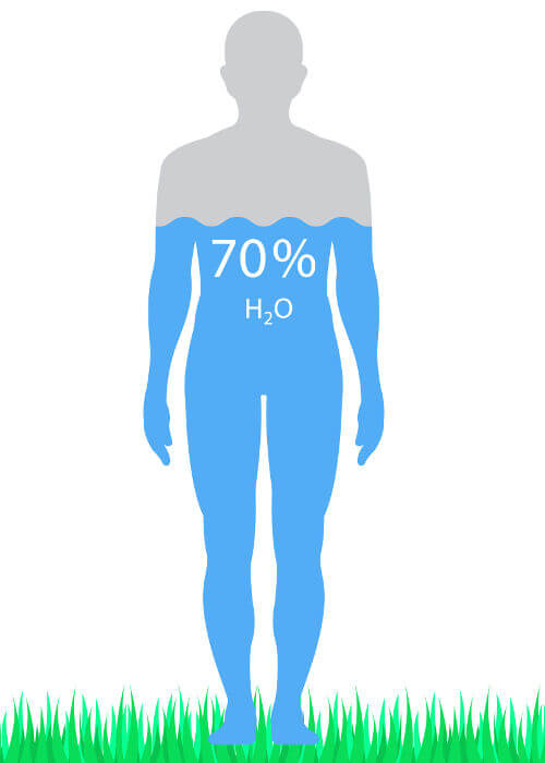 O corpo humano apresenta cerca de 70% de água.