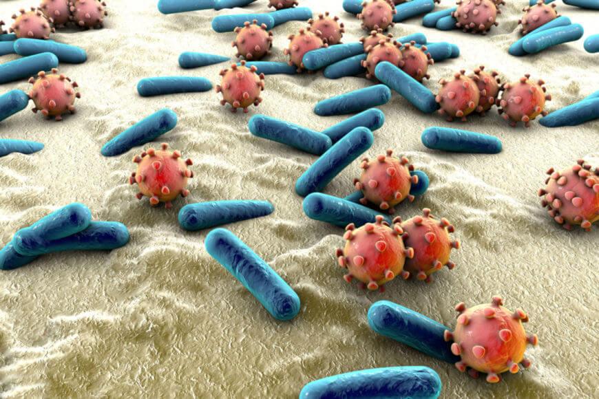 Sepse é a resposta do organismo a uma infecção, gerando uma disfunção orgânica. Infecções podem ser causadas por organismos como vírus e bactérias.