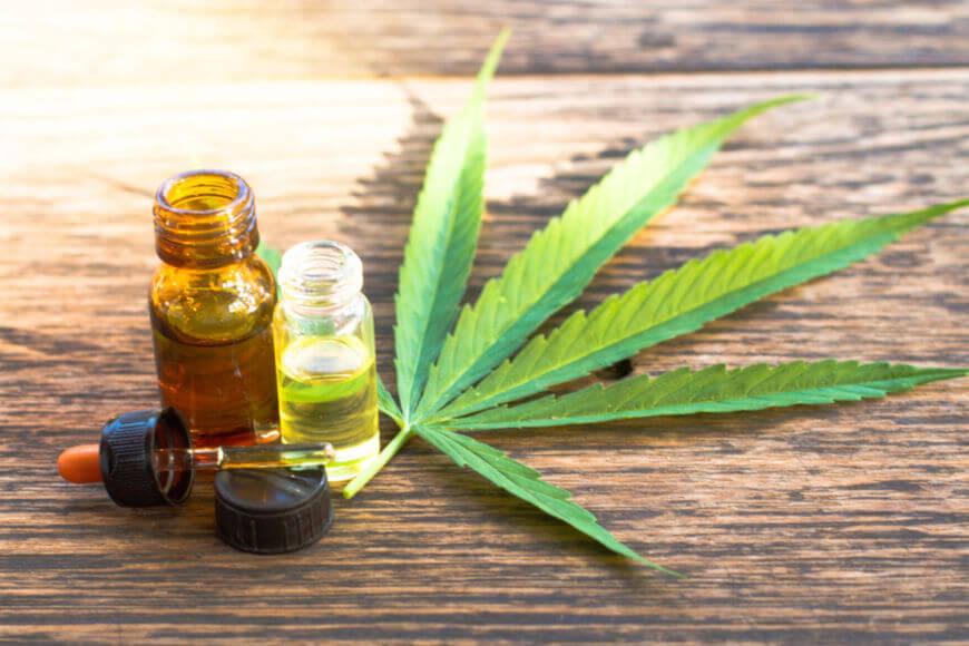 A maconha é a droga ilícita mais utilizada no mundo. Atualmente, a sua utilização com fins terapêuticos tem aumentado significativamente.
