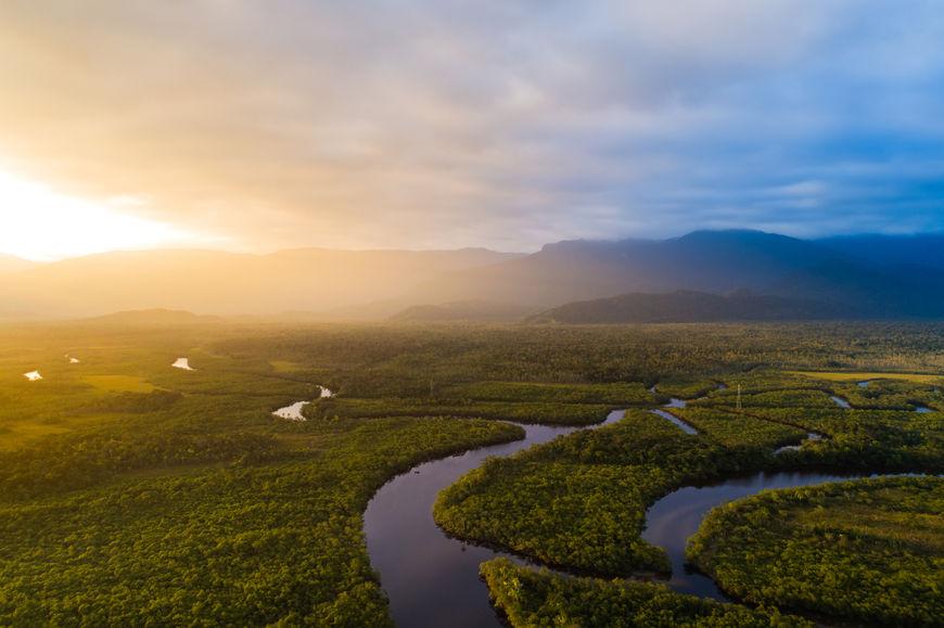 A Floresta Amazônica está presente no bioma Amazônia e encontra-se distribuída pela Região Norte do Brasil, além de países como Colômbia e Equador.