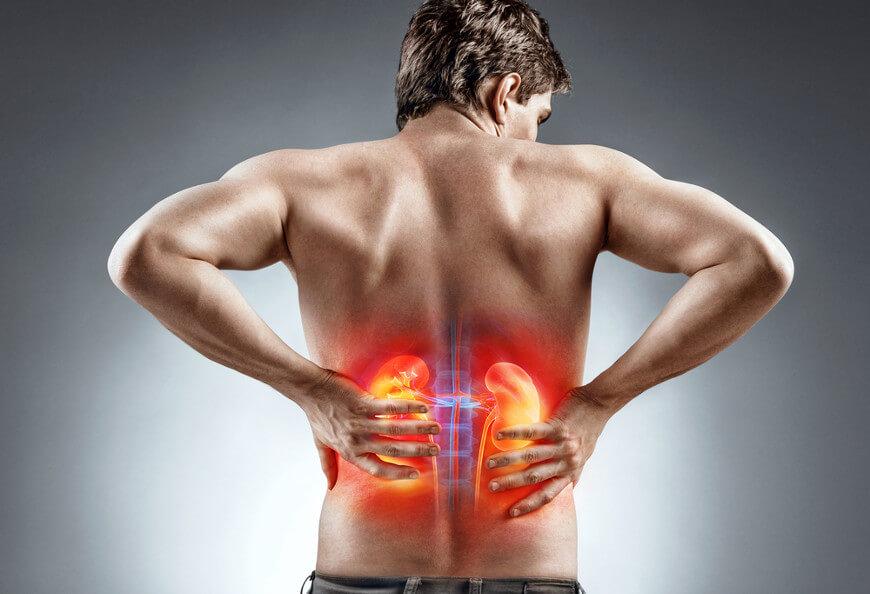 A insuficiência renal pode ser causada por inúmeros fatores que podem ser classificados  como pré-renal, intrarrenal e pós-renal.