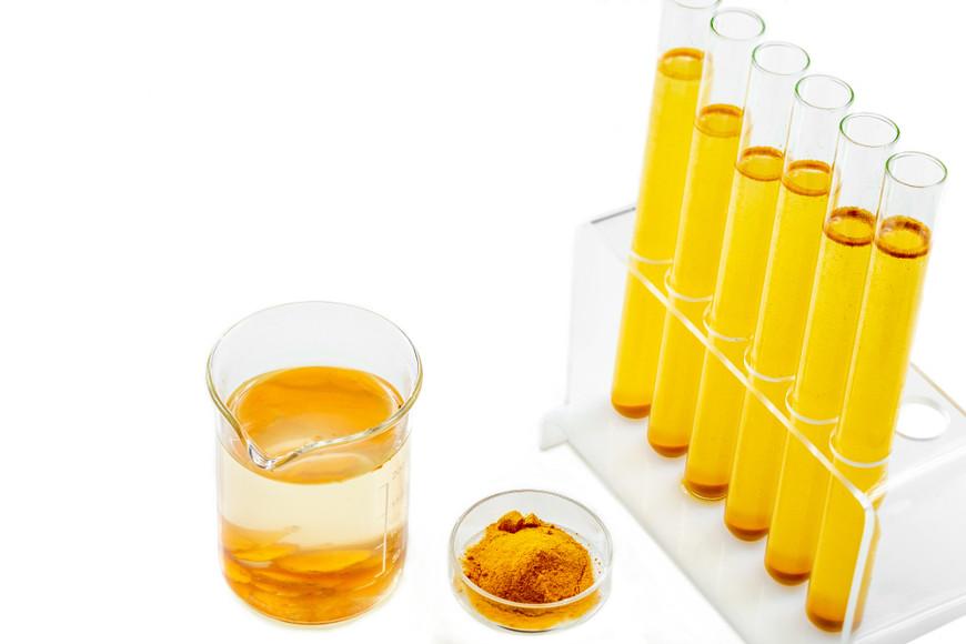 A cada dia novos estudos comprovam as diversas propriedades medicinais da cúrcuma.