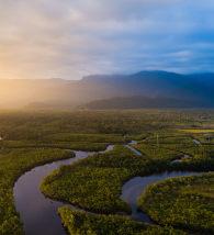 Fotografia aérea da floresta amazônica