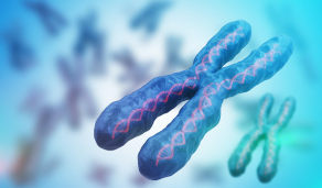 Ilustração microscópica de cromossomo