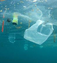 Lixo boiando em oceano