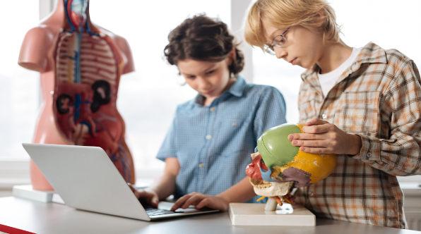 Estudantes em frente à computador e ao lado decrânio e corpo humano de estudos