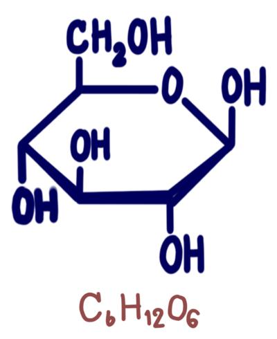 A glicose é degradada no processo de glicólise para a obtenção de energia.
