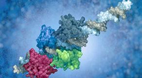 Ilustração de proteína