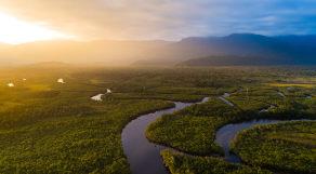 Floto aérea da floresta amazônica