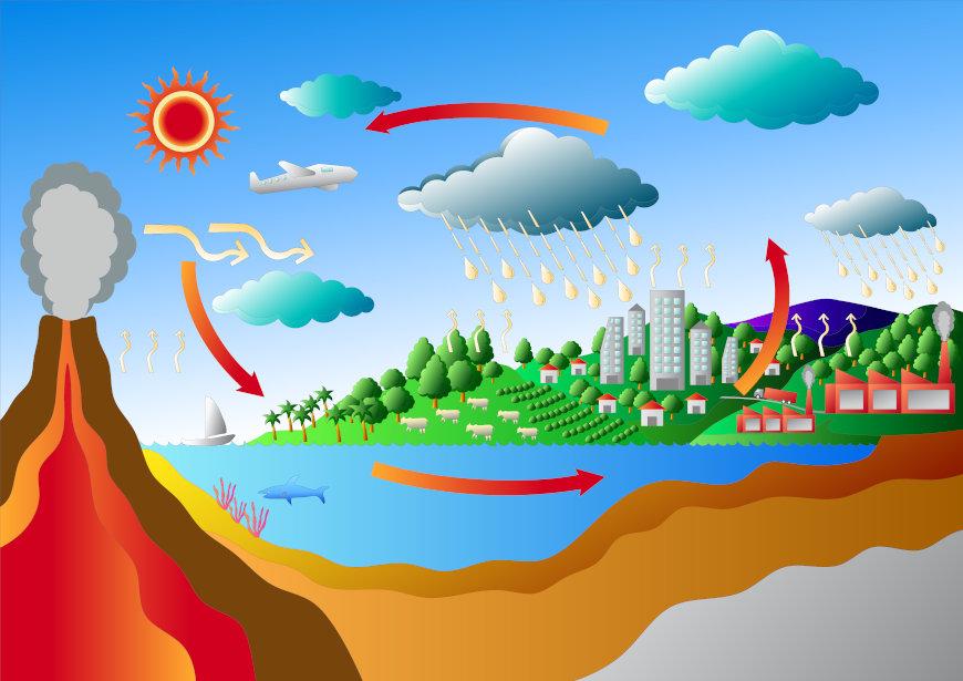 O ciclo do carbono pode ser dividido em dois: biológico e geológico.