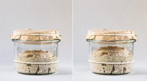 Fermentação ocorrendo em massa de pão dentro de vidro