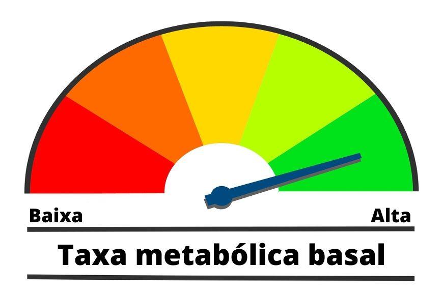 A taxa de metabolismo basal pode variar de acordo, por exemplo, com o sexo e a idade.