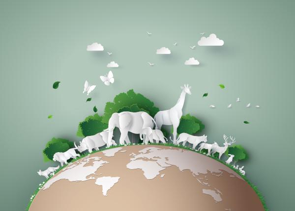 Celebrado no dia 5 de junho, o Dia Mundial do Meio Ambiente, a cada ano, trabalha um tema de importância ambiental.