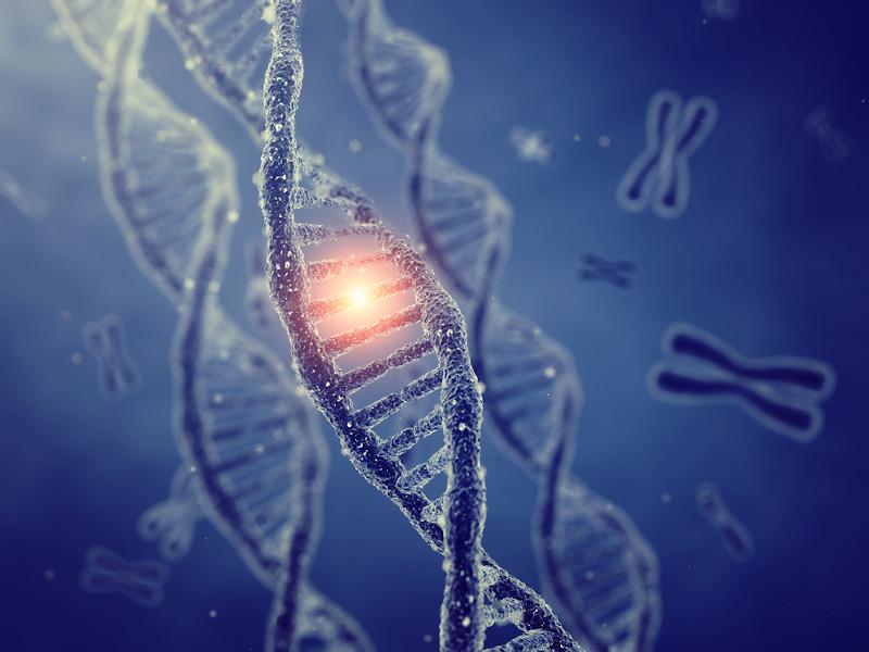 As mutações permitem o surgimento de novos alelos nas populações.