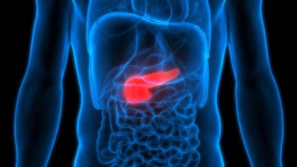 O pâncreas é uma glândula mista localizada no abdome, atrás do estômago.