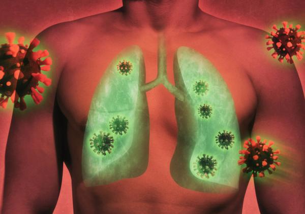 Pulmão vírus e bactérias