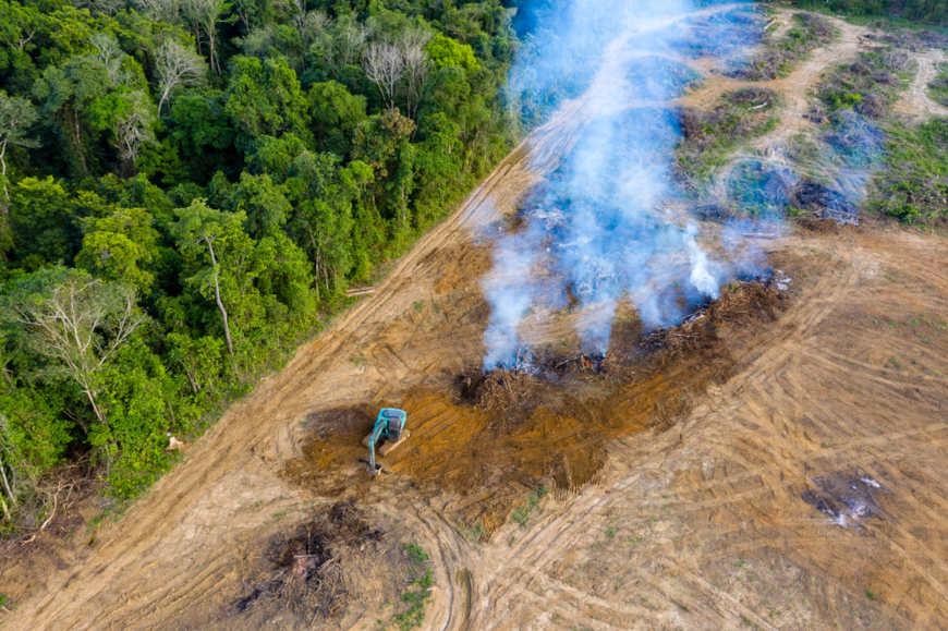 Queimadas e desmatamento são dois fatores que podem provocar grande desequilíbrio ambiental.