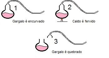 Representação simplificada do experimento de Pasteur