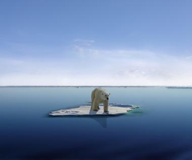 Cientistas apontam que o derretimento de geleiras nos polos é consequência do aquecimento global