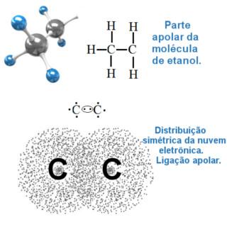 Ligação covalente apolar entre átomos de carbono do etanol