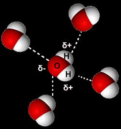 Ligações de hidrogênio na água líquida