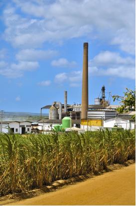 Fábrica de açúcar e álcool no Brasil