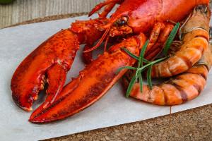 O camarão e a lagosta são espécies de crustáceos amplamente utilizadas na alimentação humana