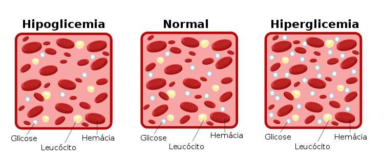 Observe o esquema que demonstra as variações dos níveis de glicose no sangue humano.