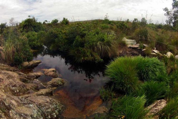 A nascente histórica do Rio São Francisco localiza-se na Serra da Canastra, em Minas Gerais.