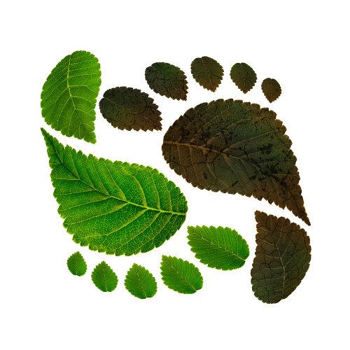 A pegada ecológica avalia o impacto produzido por nós no planeta