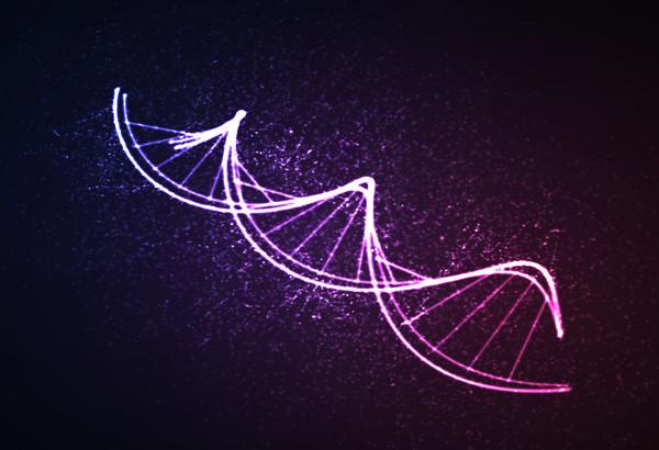 A transmissão dos genes depende do processo de duplicação do DNA
