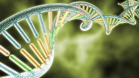Alguns exercícios de genética podem ser realizados por meio do quadro de Punnett