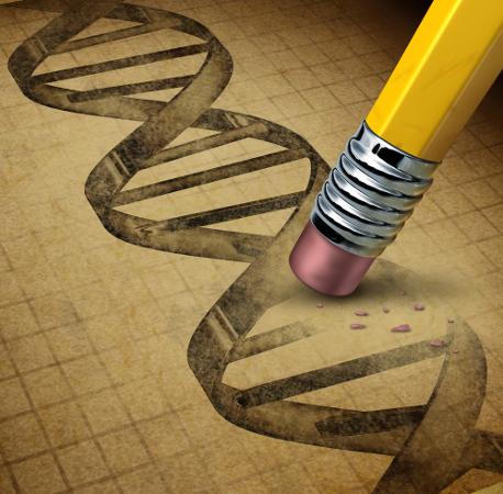 Compreender os conceitos é fundamental para compreender a Genética