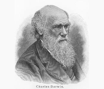 Darwin: um dos mais conhecidos precursores dos aspectos inerentes à evolução*