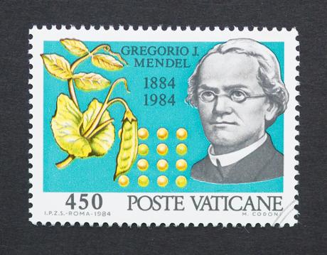 Mendel contribuiu amplamente para o aprofundamento dos entendimentos em Genética *