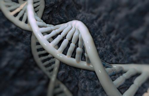 O DNA pode conter genes que desencadeiam a morte de seu portador