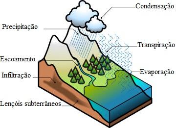 Observe a representação dos processos que ocorrem no ciclo da água