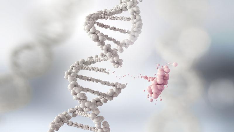 Os genes são segmentos de moléculas de DNA localizados no núcleo das células